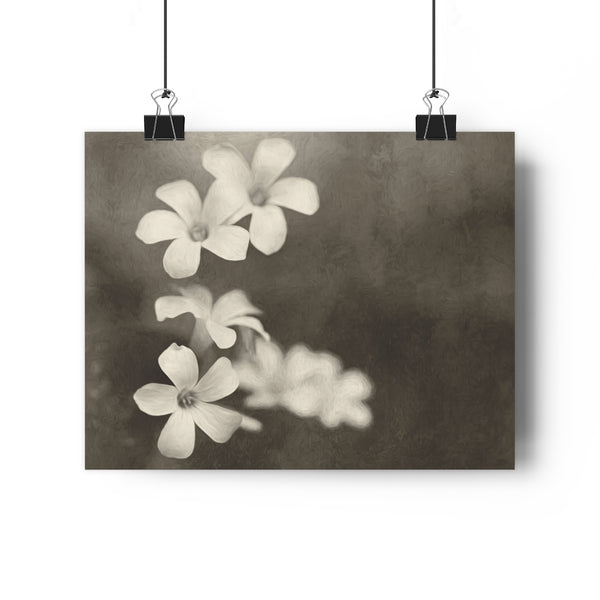 Purple Oxalis Shamrock Blooms Vintage Wall Art - Giclée Art Print