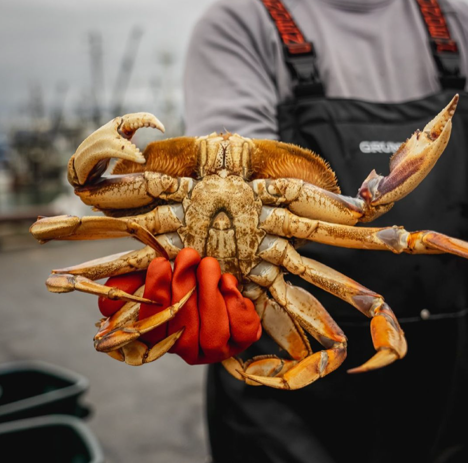 How to Steam Dungeness Crab Safely