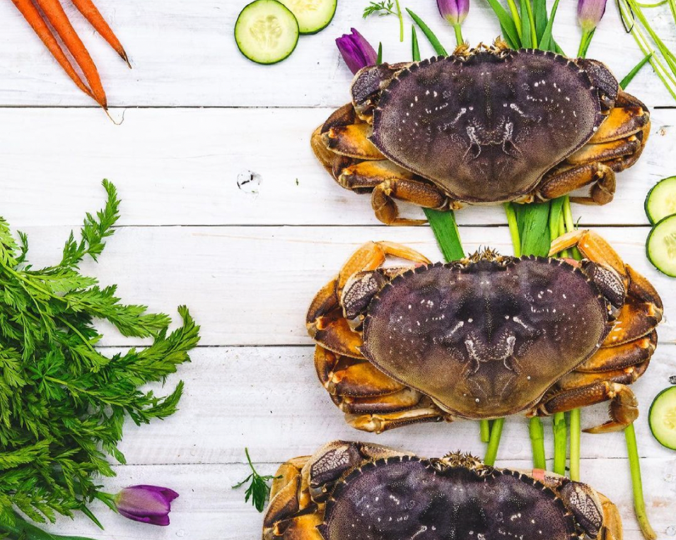 3 Dungeness Crab