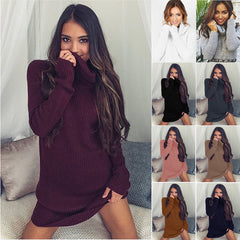 Sexy Turtle Neck Long Sweater Dress - Oh Yours Fashion - 1