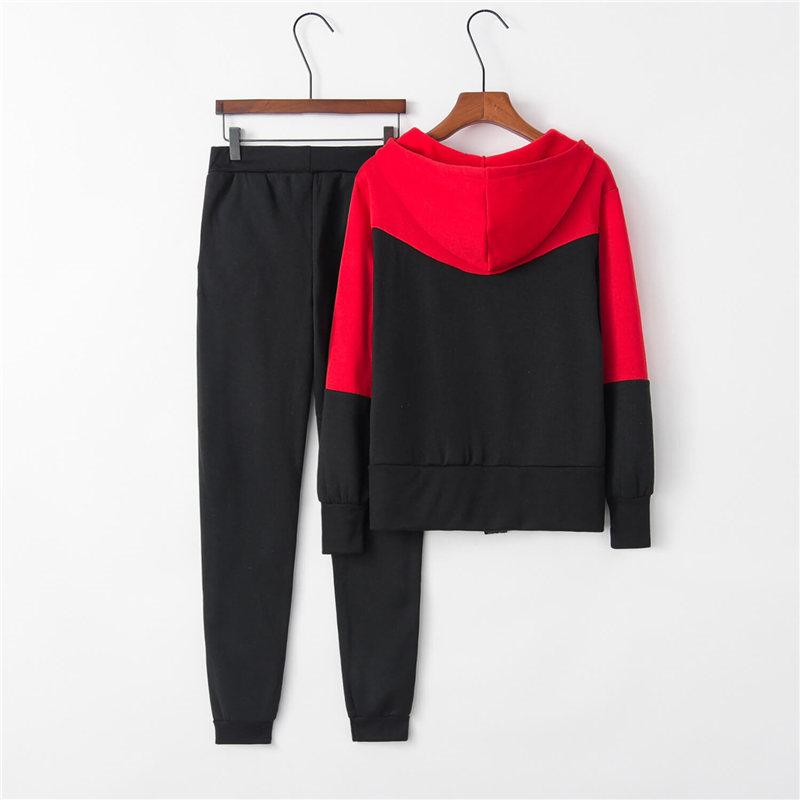 Casual Color Block Hooded Long Sleeve High Waist Pants Sets