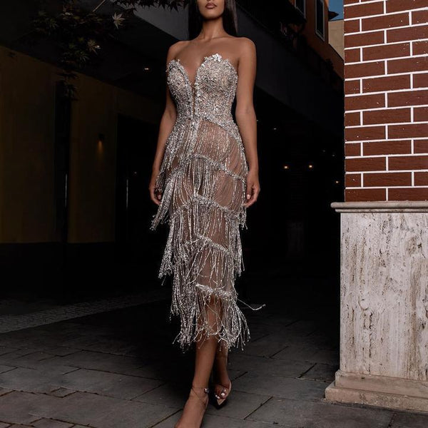 Silver Fringe See Through Party Dress
