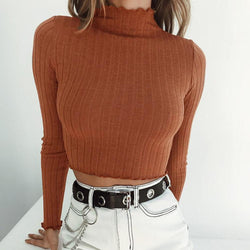 Turtleneck Slim Knit Women Cropped Short Sweater