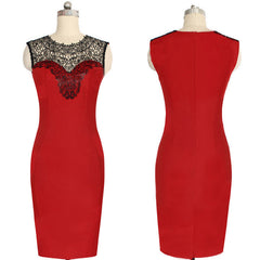 Celeb Lace Sleeveless Bodycon Knee-length Dress - O Yours Fashion - 5