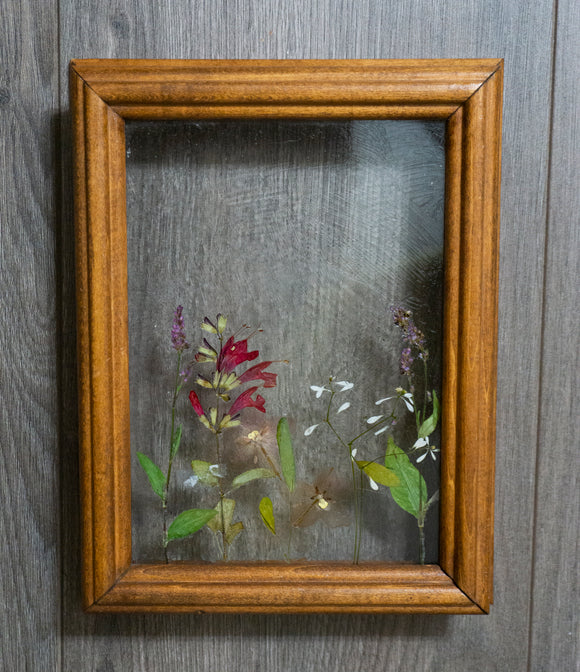 Delicate Summer Day | Pressed Flower Art