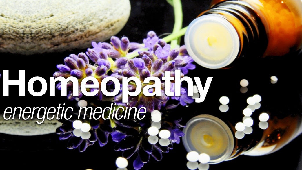 Schools of Homeopathy banner