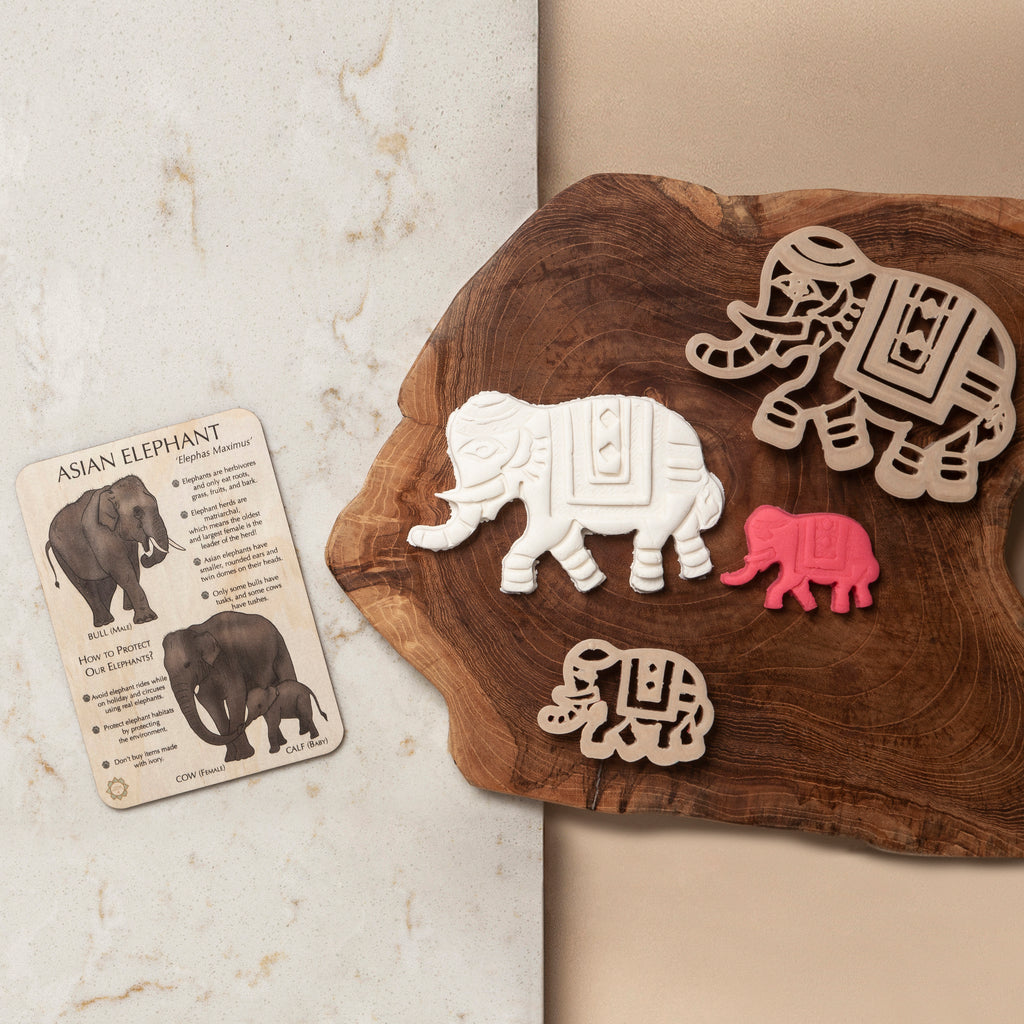 Asian Elephant Sensory Pack - Eco Cutter™, Timber Tile, And Colour In Card