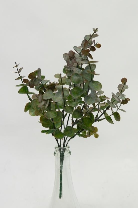 Eucalyptus Mini Bush