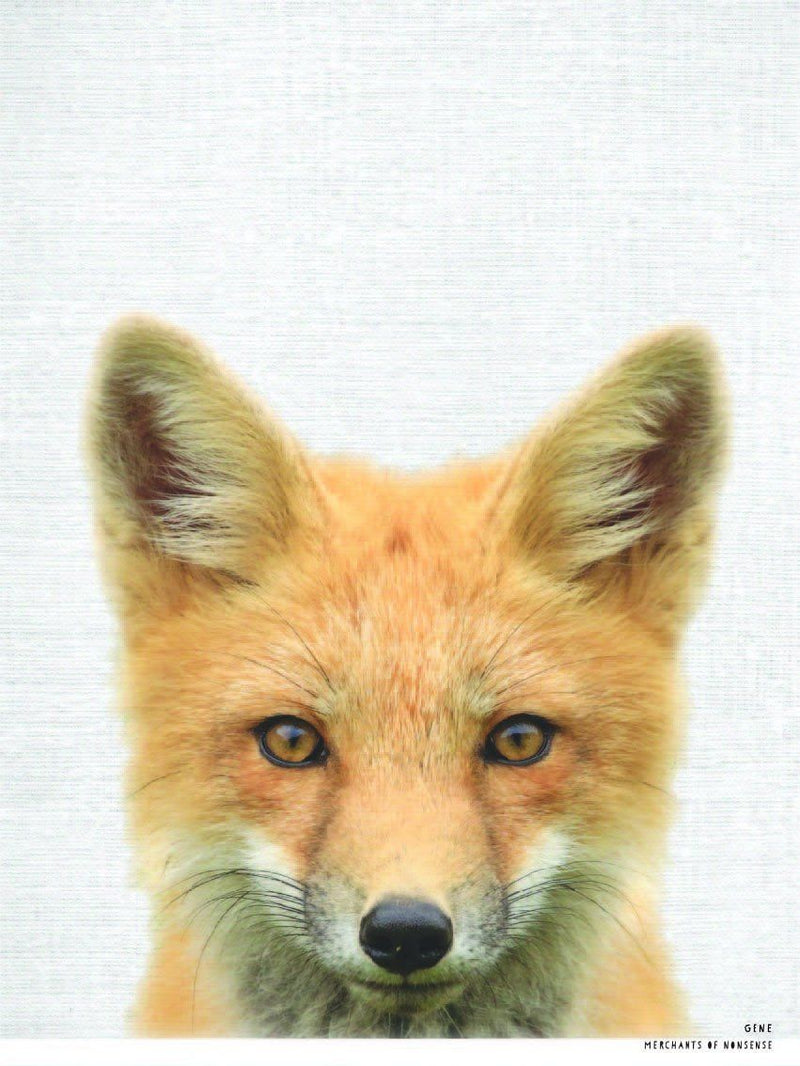 Gene the Red Fox