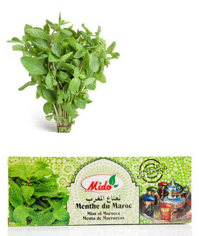 MIDO Menthe Bouquet 50gr ( Bunch of Mint / نعناع المغرب )