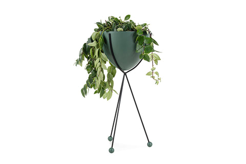 Glee Planter, Large