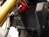 EP BMW R 1250 R Sport Radiator Guard 2019+