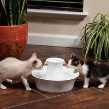 Load image into Gallery viewer, Drinkwell® Ceramic Avalon Pet Fountain
