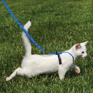 Easy Walk® Cat Harness & Lead