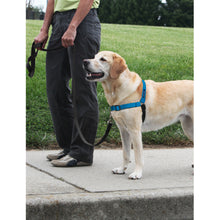 Load image into Gallery viewer, Easy Walk® Deluxe Harness