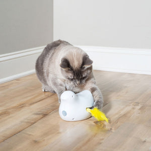 Peek-a-Bird™ Electronic Cat Toy