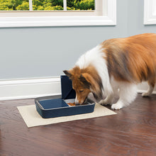 Load image into Gallery viewer, Digital Two Meal Pet Feeder