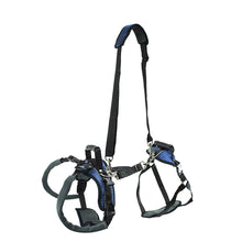Load image into Gallery viewer, CareLift™ Rear Support Harness