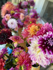dahlias from Lindsey Epstein Pottery
