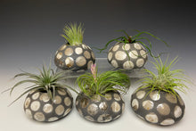 Load image into Gallery viewer, Mini Spotted Raku AirPlant Vase