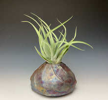 Load image into Gallery viewer, Rainbow Copper Raku AirPlant Vase #1