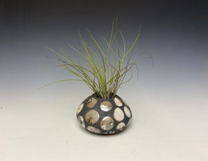 Spotted Raku AirPlant Vase