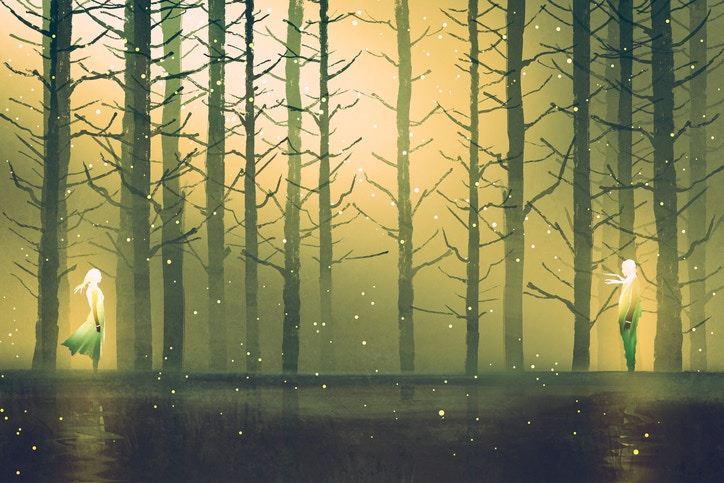 two woman's standing opposite of each other against night forest,illustration painting