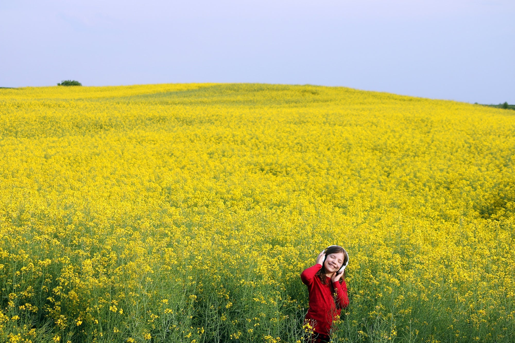 girl on yellow flower background listening to music