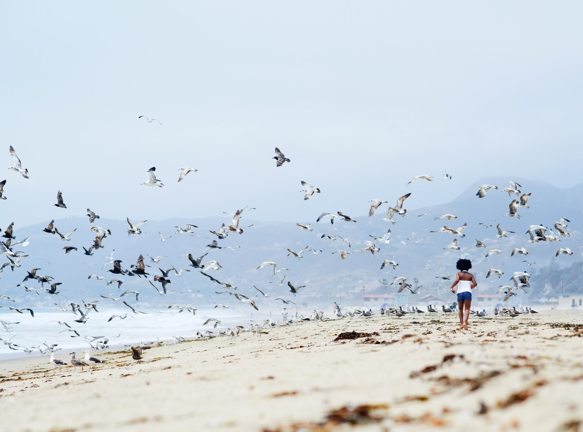 Girl running on beach with birds flying