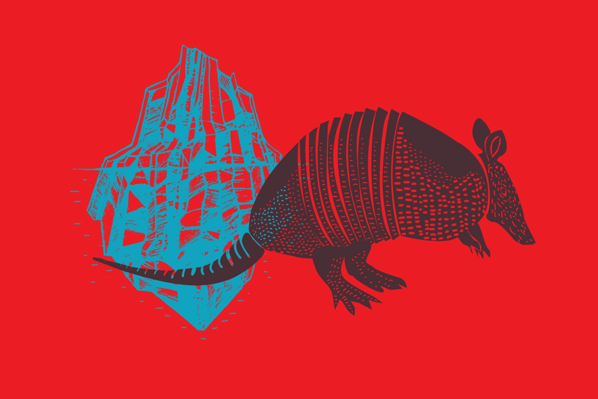armadillos on red background vector illustration