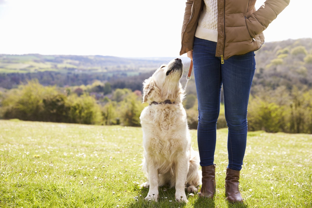 Girl is standing in a open field holding a dog
