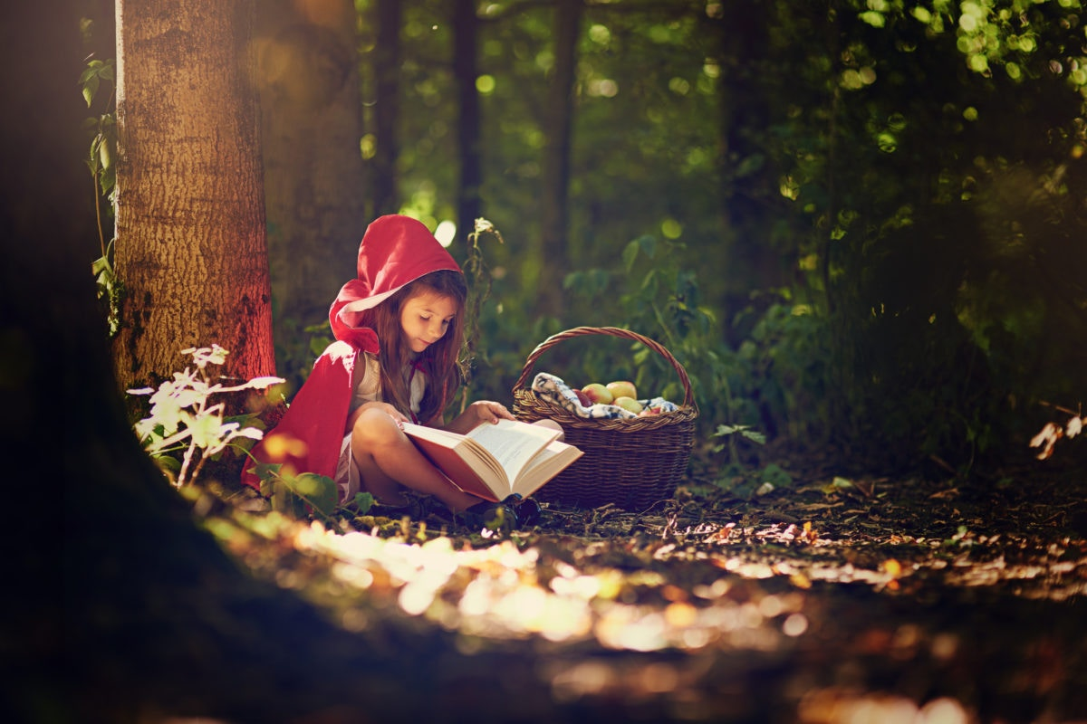 girl with with a basket and book in the forest