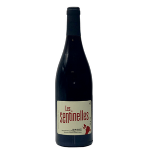 Philippe Chevarin Les Sentinelles Gamay - wino(t) brooklyn