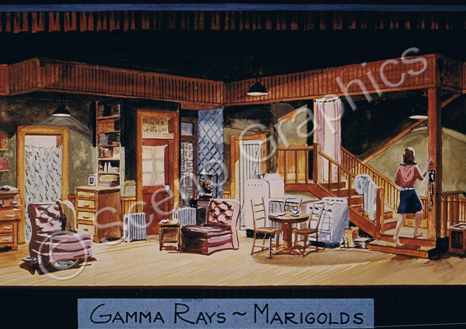The Effects of Gamma Rays on Man-in-the-Moon Marigolds Design Pak©