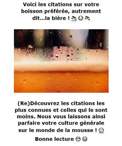 Ebook des citations sur la bière - chopedebiere.com
