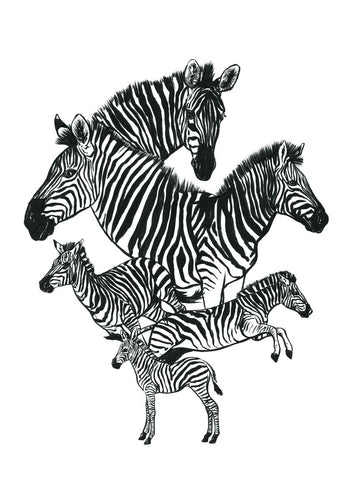 This piece features zebra studies hand drawn with a brush pen and inks.