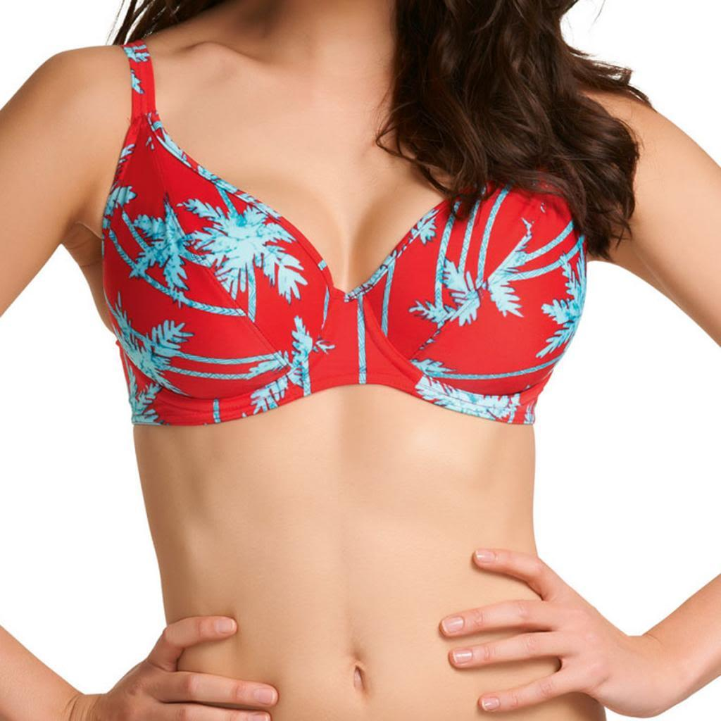 Freya South Pacific U/W Deep Plunge Bikini Top, Red