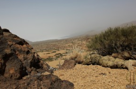 Dry desert with a man in camo gear