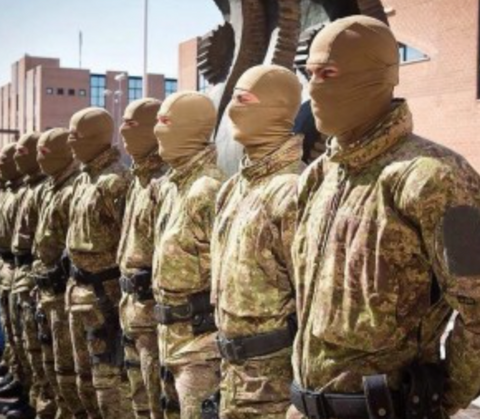 Military troops standing in a line