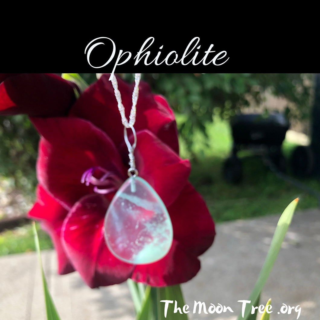 Spiritual Ophiolite Pendant with Silver Plated Necklace