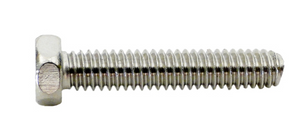 Pentair U30542SS Sta-Rite Pump Screw Cap