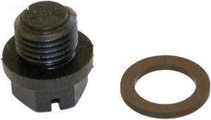 Hayward Drain Pipe Plug With Gasket - SPX1700FGV