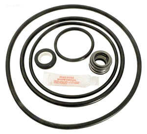 Sta-Rite J-Series Repair Kit - APCK1043