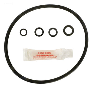 Hayward Cl200 Chlorinator O-Ring Kit - GO-KIT55