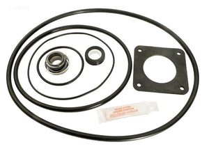Pentair/American Ultra-Flo & Bronze Repair Seal Kit - APCK1014