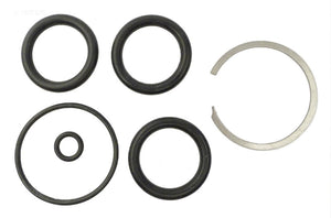 Sta-Rite O-Ring Replacement Kit WC29888 - O-365