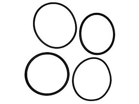 "Raypak 006724F O-Ring Kit for 2"" Connector"