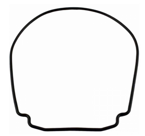 Jandy Pump Body Housing Gasket - R0555900