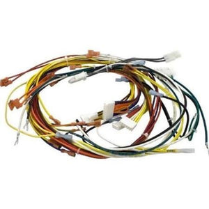 Pentair 42001-0058S Pool Wiring Harness