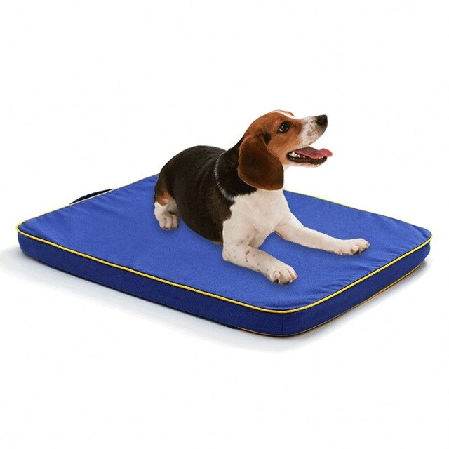 Filling Sponge Thicken Warm Dog Cushion House-Dog beds-petsoftcare-Blue-85x60cm-petsoftcare
